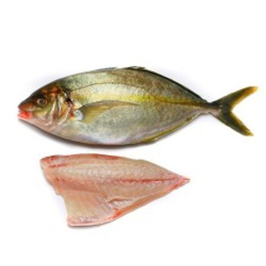 Trevally - Sashimi Grade Japanese Shima Aji Portions (6-7 oz)