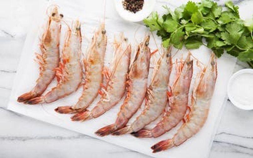 Wild Gulf Shrimp-(Head On)