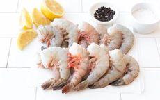 Wild Gulf Shrimp (Shell On/Head Off)