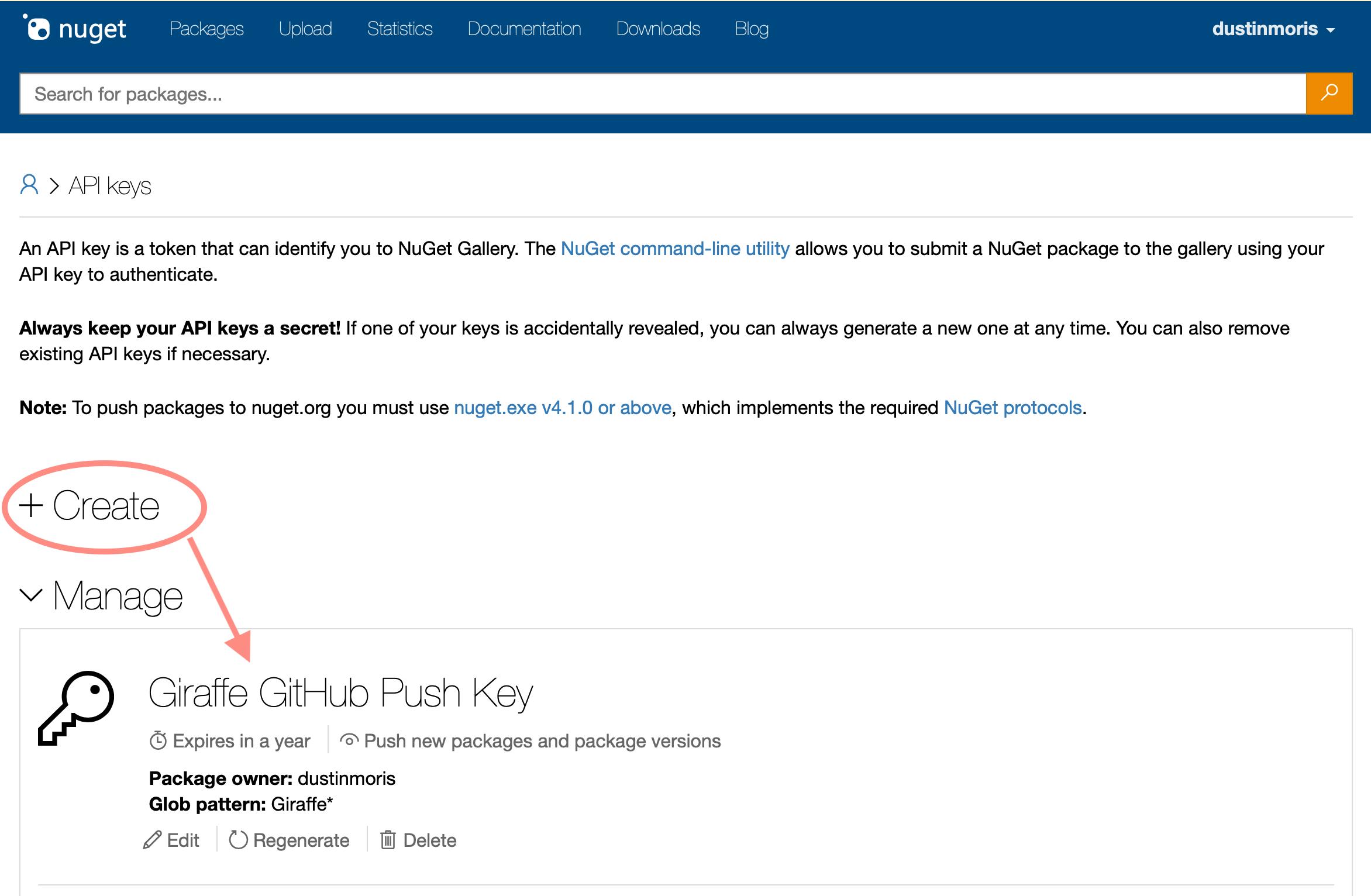 NuGet API Key