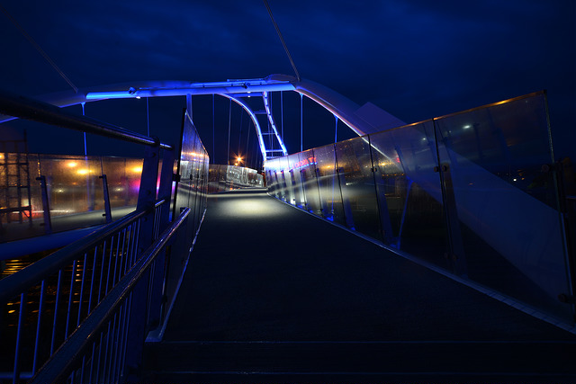 Seabraes Bridge at Night