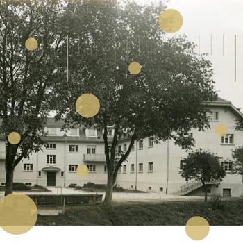 Interaktive Visualisierungen zur Anstaltslandschaft Schweiz 1933-1980