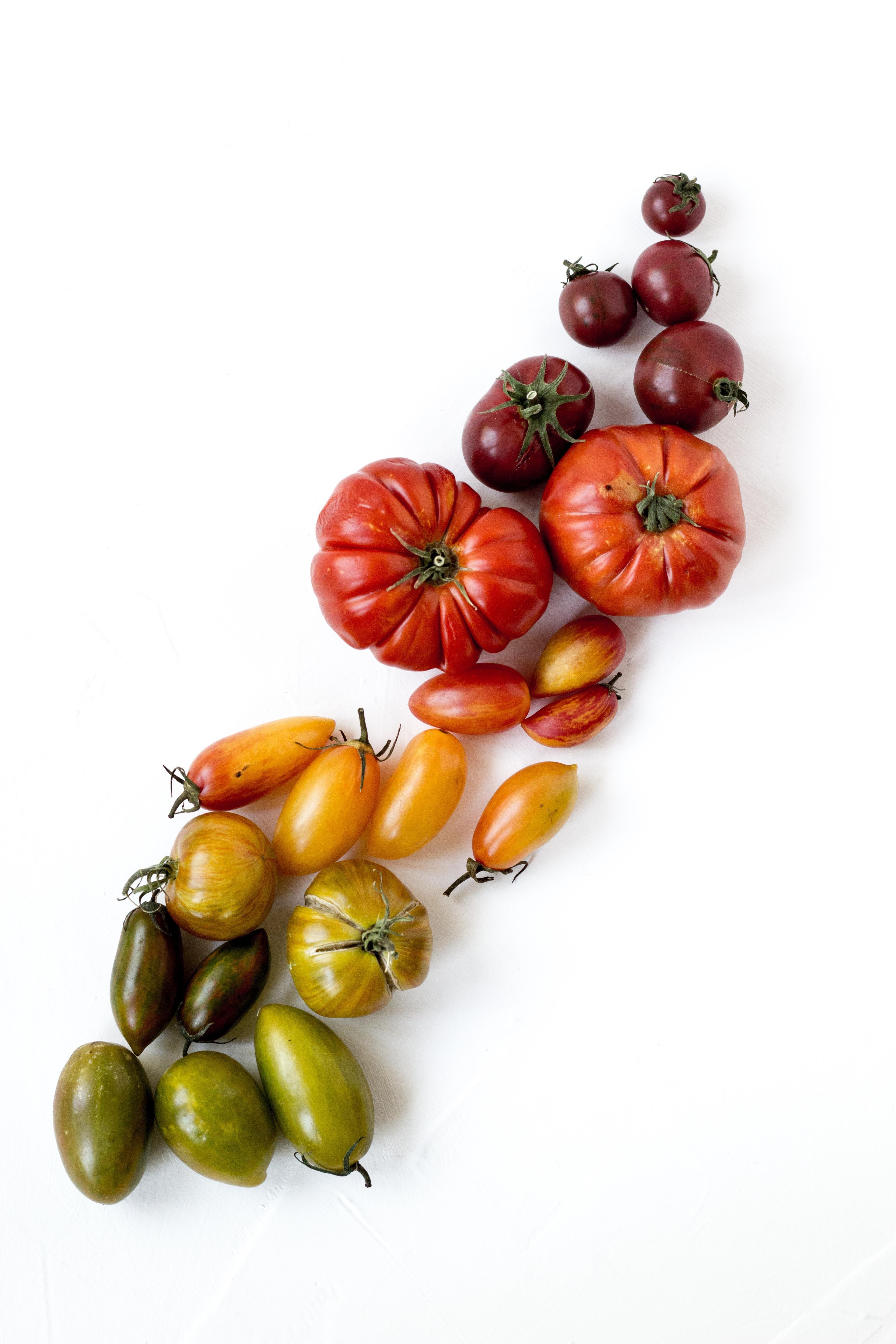 Formule tomates anciennes