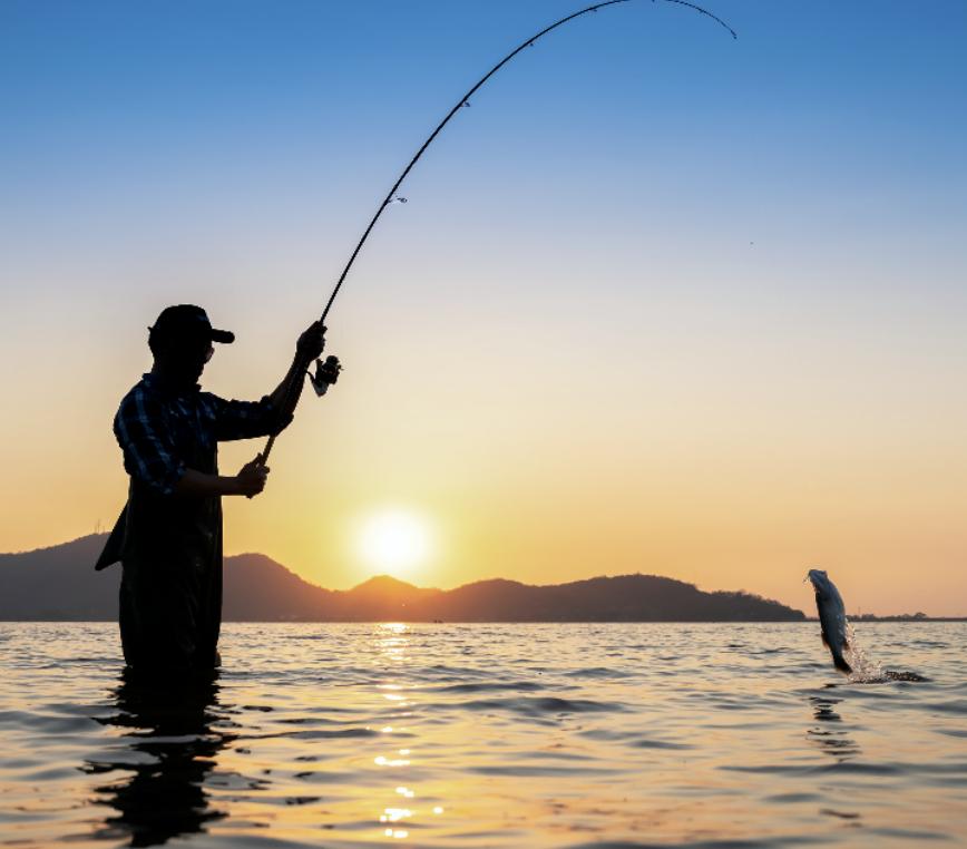 All American Angler