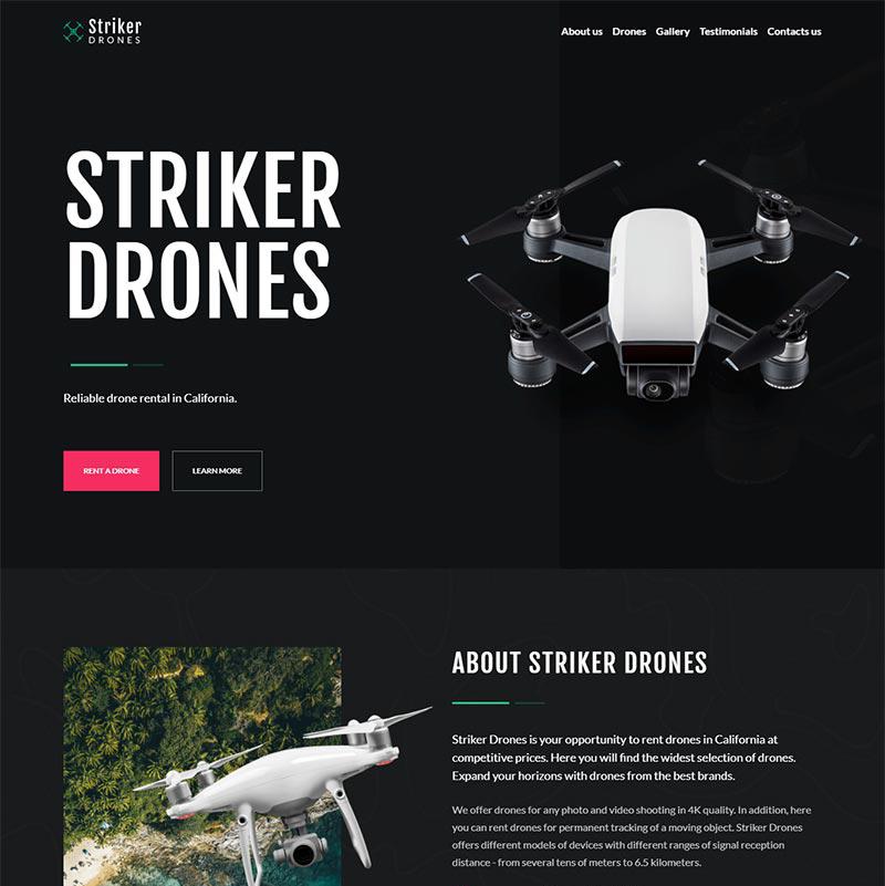 Drones Rental