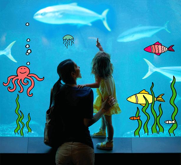 Hello, Aquarium