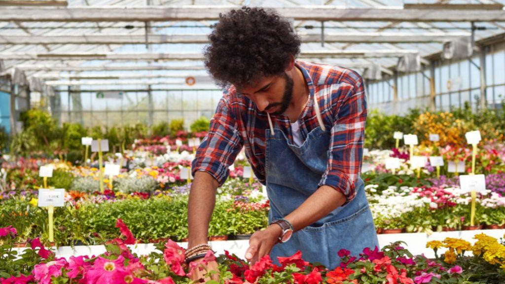 Pole emploi - offre emploi Vendeur en horticulture (H/F) - Saint-Saturnin