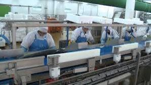 Pole emploi - offre emploi Agent de production (H/F) - Quimper