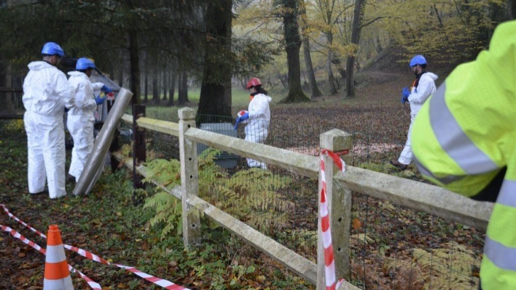 Pole emploi - offre emploi Operateur de tri (H/F) - La Guerche-de-Bretagne