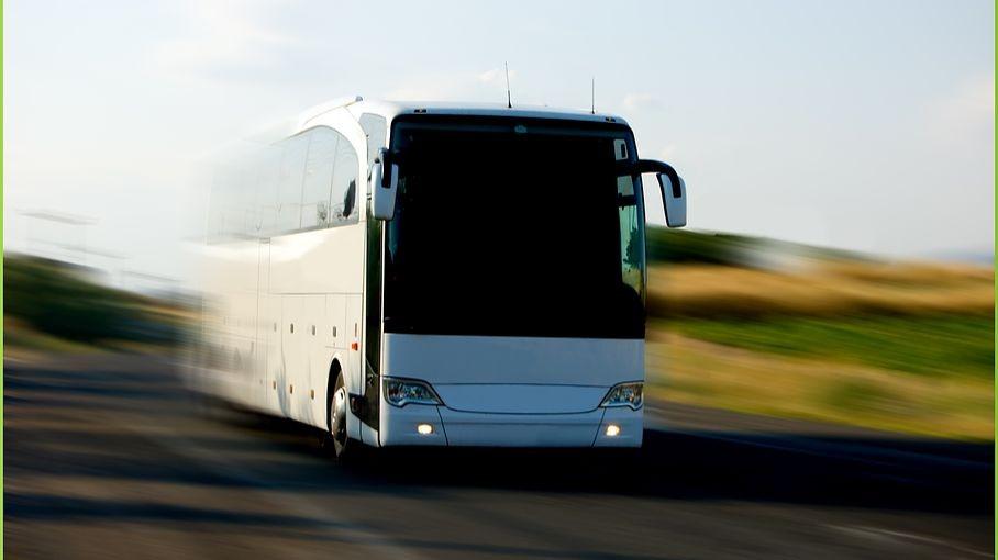 Pole emploi - offre emploi Conducteur de bus (H/F) - Lannemezan
