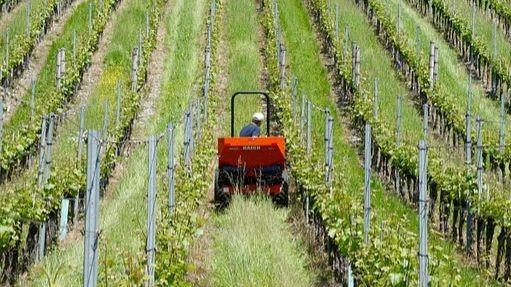 Pole emploi - offre emploi Tractoriste (H/F) - Castillon-La-Bataille