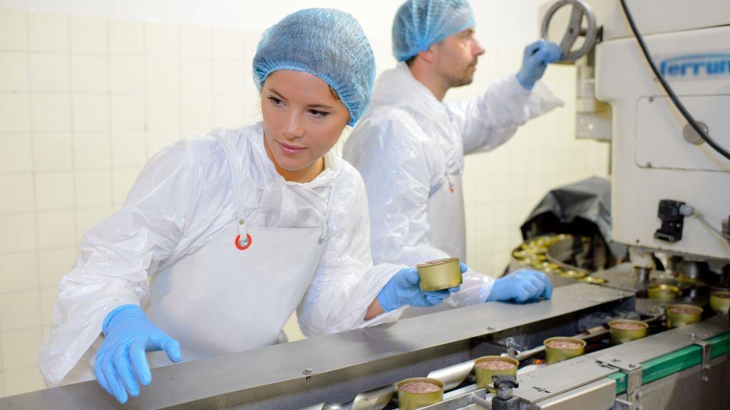 Pole emploi - offre emploi Agent de production (H/F) - Les Lucs-sur-Boulogne