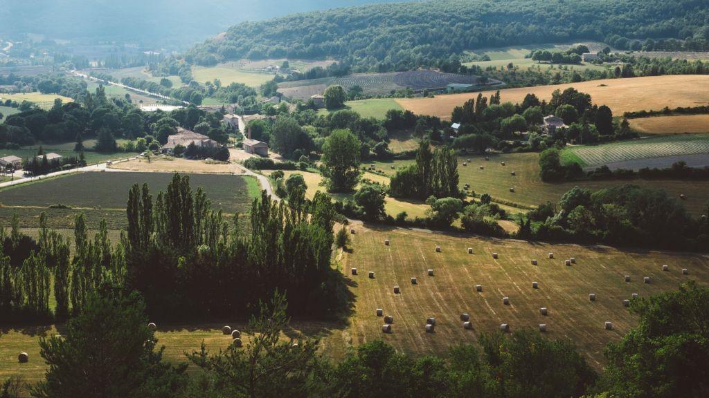 Pole emploi - offre emploi Ripeur (H/F) - Saint-Sulpice-La-Pointe