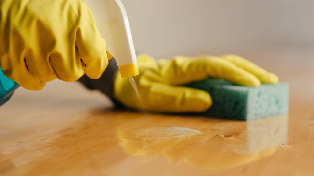 Pole emploi - offre emploi Agent de nettoyage industriel (H/F) - Challans
