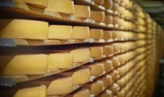 Pole emploi - offre emploi Empileur claies fromagerie (H/F) - Pont-Scorff