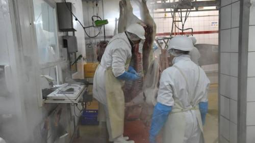 Pole emploi - offre emploi Ouvrier d'abattoir (H/F) - Saint-Pierre-Sur-Dives