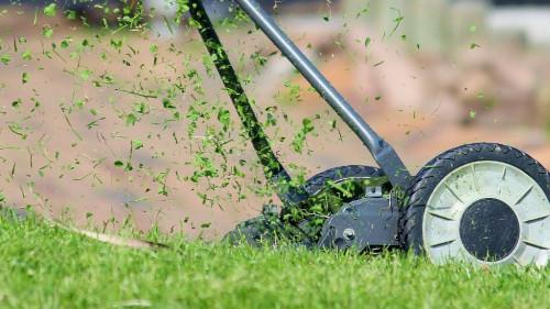 Pole emploi - offre emploi Chef d'équipe paysagiste (H/F) - Auray