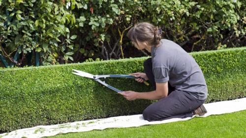 Pole emploi - offre emploi Jardinier / paysagiste domaine privé (H/F) - Yvoire