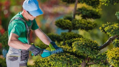 Pole emploi - offre emploi Jardinier / paysagiste (H/F) - Meyreuil