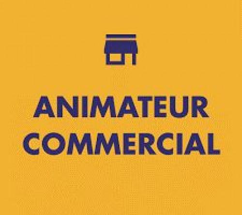 Pole emploi - offre emploi Animateur commercial (H/F) - Paris