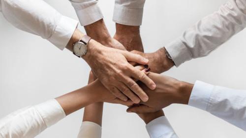 Pole emploi - offre emploi Conseiller emploi et carrière (H/F) - Pau