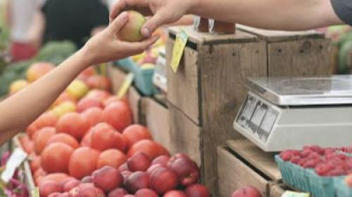 Pole emploi - offre emploi Préparateur de commandes fruits/légumes (H/F) - Schiltigheim