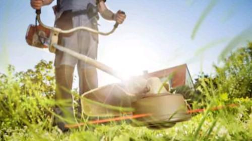 Pole emploi - offre emploi Ouvrier espace verts (H/F) - Ajaccio