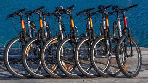 Pole emploi - offre emploi Technicien vendeur cycles (H/F) - Vernoux-En-Vivarais
