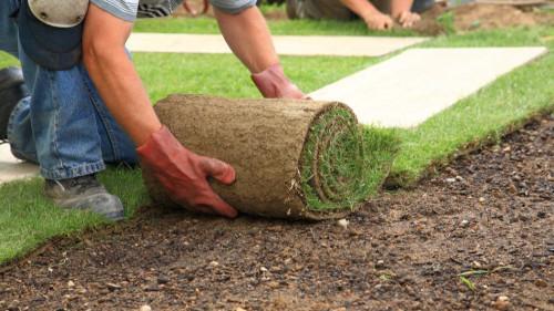 Pole emploi - offre emploi Ouvrier création espaces verts (H/F) - Aizenay
