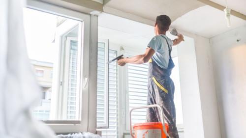 Pole emploi - offre emploi Peintre intérieur et extérieur (H/F) - Mortagne-Sur-Sèvre
