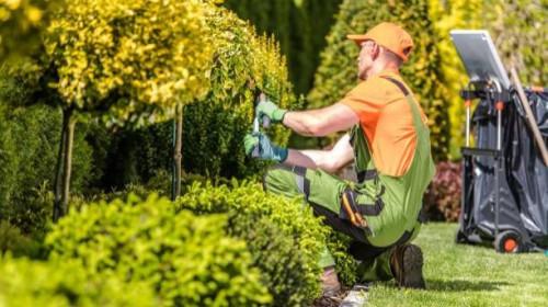 Pole emploi - offre emploi Ouvrier espace vert (H/F) - Saumur