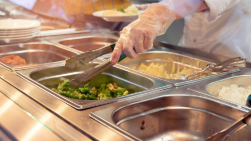 Pole emploi - offre emploi Employé de restauration collective (H/F) - Auterive
