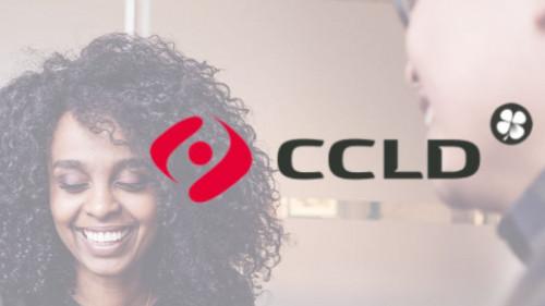 Pole emploi - offre emploi Ccld consultant (H/F) - Bordeaux