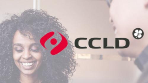 Pole emploi - offre emploi Ccld consultant (H/F) - Aix-En-Provence