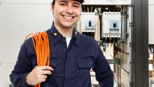 Pole emploi - offre emploi Électricien industriel (H/F) - Vannes