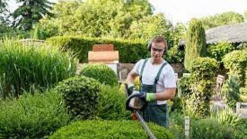 Pole emploi - offre emploi Ouvrier paysagiste (H/F) - Venelles