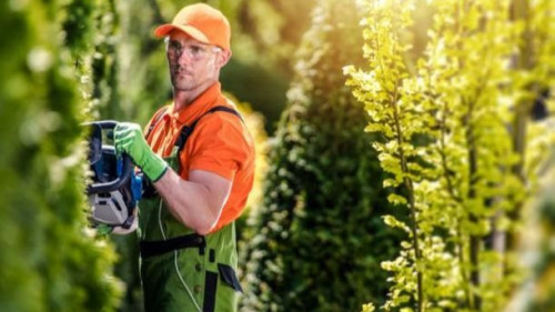 Pole emploi - offre emploi Jardinier (H/F) - Naves
