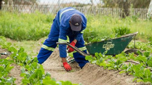 Pole emploi - offre emploi Ouvrier espace vert (H/F) - Bayonne