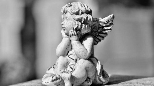 Pole emploi - offre emploi Porteur funéraire (H/F) - Limoges