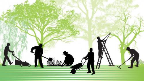 Pole emploi - offre emploi Ouvrier espaces verts / manoeuvre tp (H/F) - Les Essarts