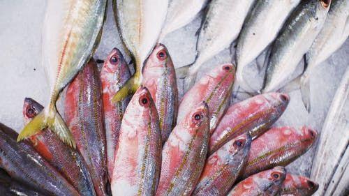 Pole emploi - offre emploi Vendeur(se) en poissonnerie (H/F) - Les Herbiers