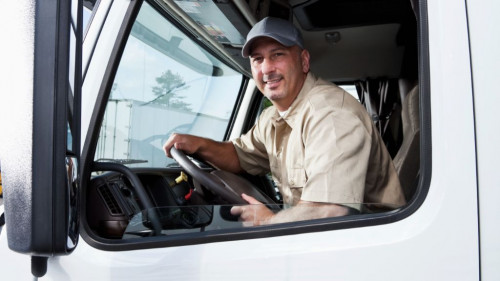 Pole emploi - offre emploi Chauffeur pl ampliroll (H/F) - Chalon-sur-Saône