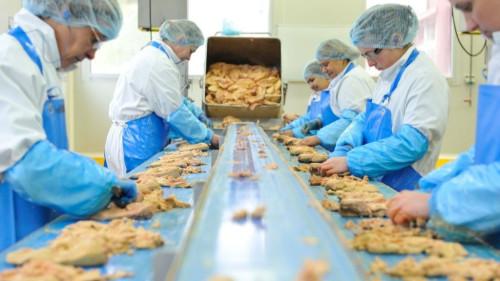 Pole emploi - offre emploi Agent de production agroalimentaire (H/F) - Goussainville