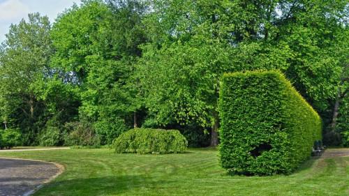 Pole emploi - offre emploi Ouvrier entretien espaces verts (H/F) - Pinterville