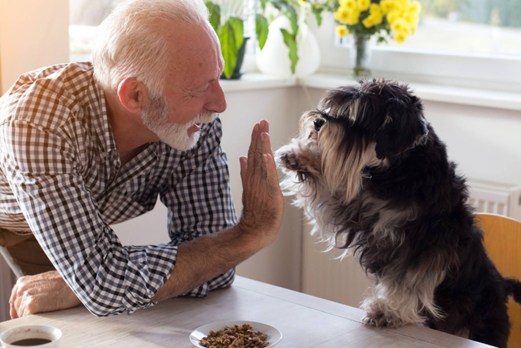 A senior man leans over the table to give his dog a high five