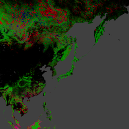 New High Resolution Forest Maps Reveal World Loses 50 Soccer Fields