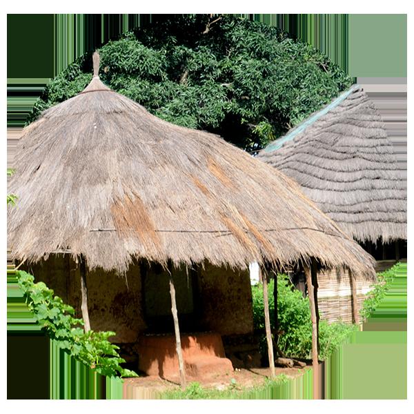 運送至Guinea-Bissau指南
