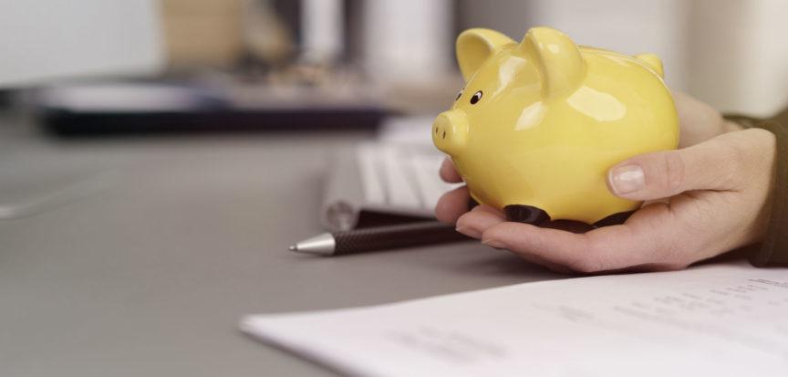 Echo-NHS-Healthcare-Piggy-Bank