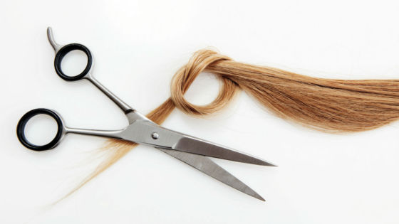 Echo-NHS-Healthcare-Hairdressing-Scissors-and-Hair