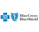 Blue Cross Blue Shield vision insurance